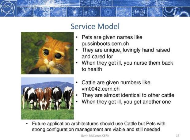 Slide from a Gavin McCance Presentation