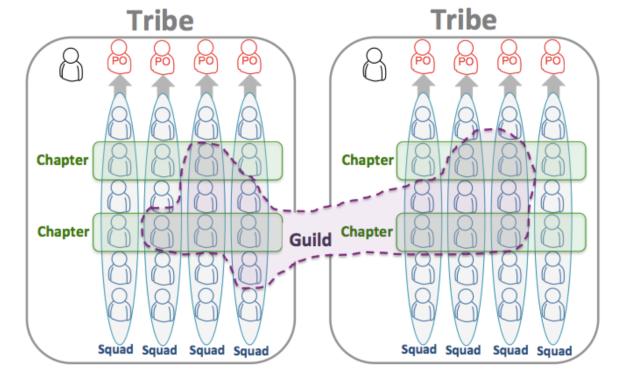 Figure 2. Spotify's Agile Squad Organization (2012)